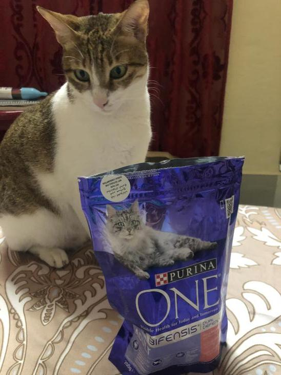 Purina ONE cat food par Zahra