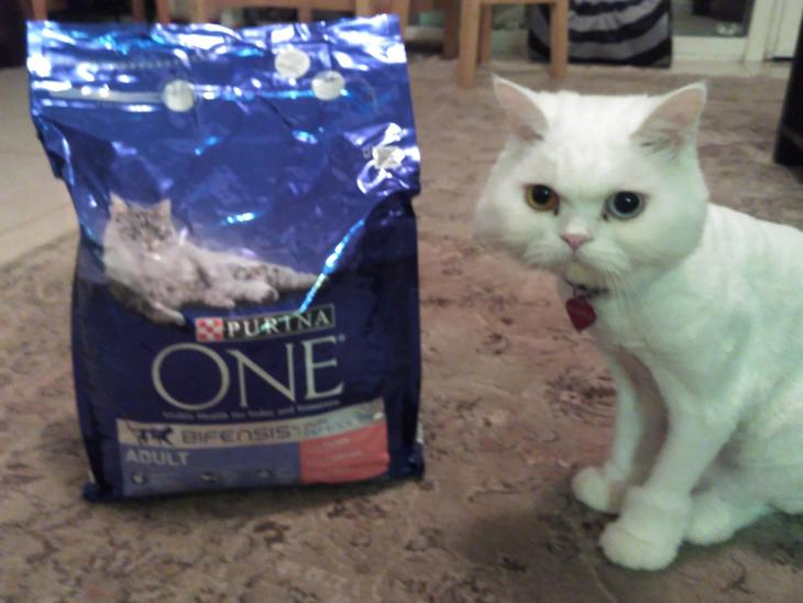 Purina ONE cat food par Anastasia